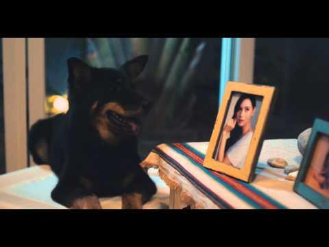 Hong Kong Dog Rescue 2015 Commercial starring Ana R.