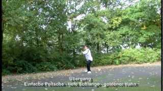 Yang Stil Tai Chi - tiefe-Schlange - goldener Hahn