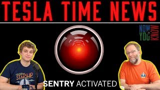 Tesla Time News - Sentry Mode Strikes Again!