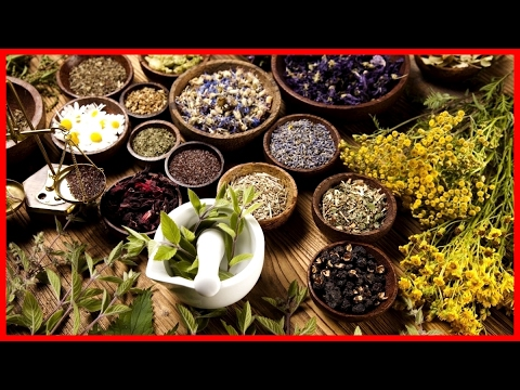 Traditional Arabic Medicine: Herbalism  - Full Documentary