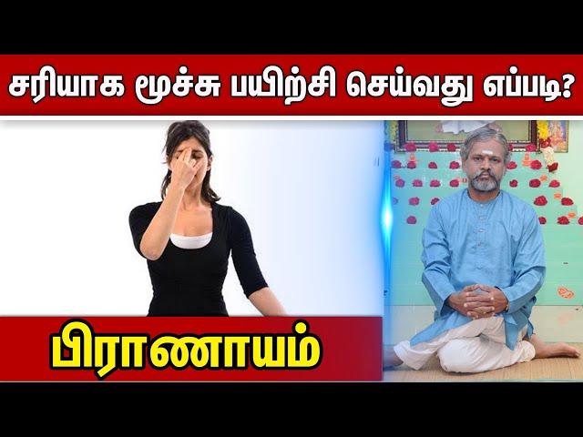 பிராணாயம் : சரியாக மூச்சு பயிற்சி செய்வது எப்படி ? Velicham Tv Entertainment