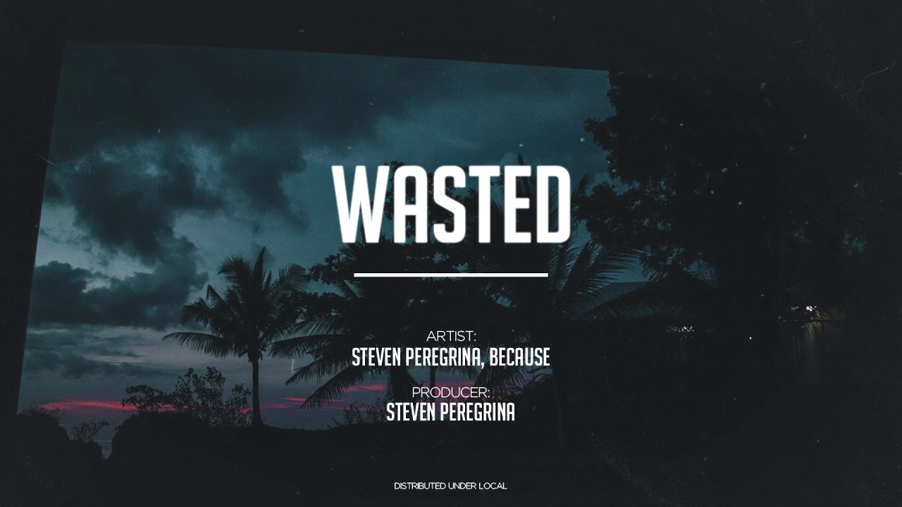 Steven Peregrina - Wasted (feat  Because)