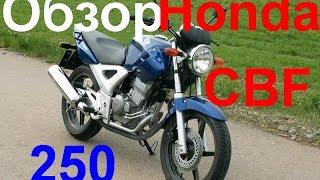 Обзор Honda CBF 250 / Антикризисный мотоцикл