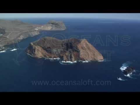 Guadalupe Island Aerial Video