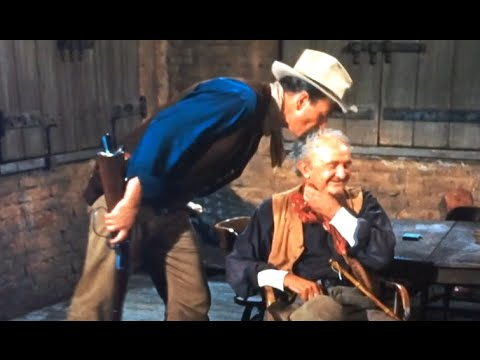 Walter Brennan Impression Once Removed