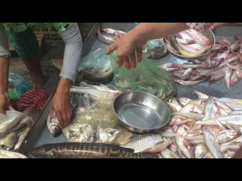 Fish Market In Phnom Penh, Market Street Food In Asia, Cambodian Market