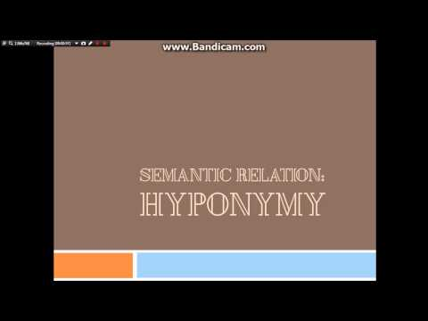 hyponym