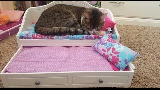 Opening The New Trundle Bed