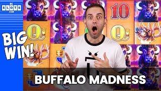 🐃 BIG WIN w/ Buffalo MADNESS ✦ BCSlots