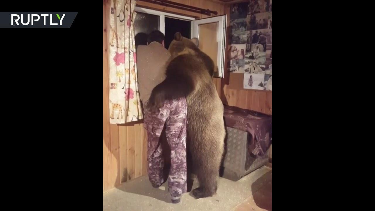 صداقة فريدة من نوعها تجمع دب ورجل روسي