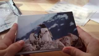 Заказ от ПОЧТОМАНИЯ. Почтовые открытки.
