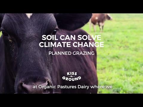 Organic Pastures Raw Dairy Farm - Kiss The Ground