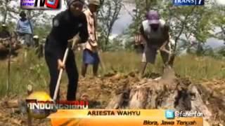 Indonesiaku Trans7 ::  Merana Ditengah Hutan Jati Nan Kaya 1