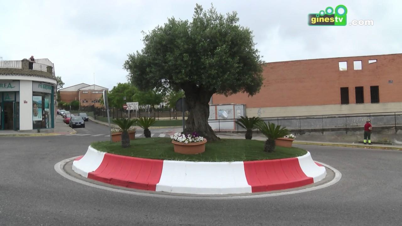 Las rotondas y medianas de la avenida de Europa y la calle Colón renuevan su aspecto