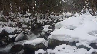 渓流「北陸・小八賀川」
