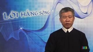Chúa Nhật: Qua thập giá đến vinh quang, 19.6.2016
