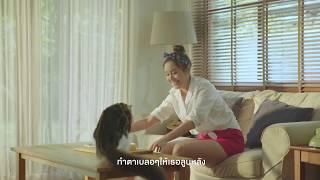 เสือหมอบ - สิงโต นำโชค  (Official MV)