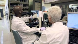Career Profile - Clinical Lab Scientist