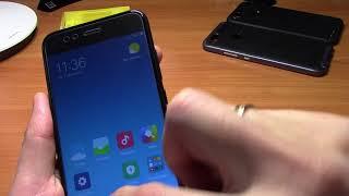Лучшее матовое стекло для Xiaomi Mi A1 / Mi5X от Carkoci + бампер Ipaky