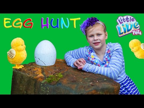 The Assistants Golden Egg Hunt for Little Live Pets Ultra Golden Chick