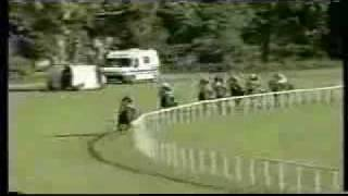 The best horse race ever!!! so funny