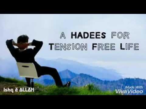 Haees tension free