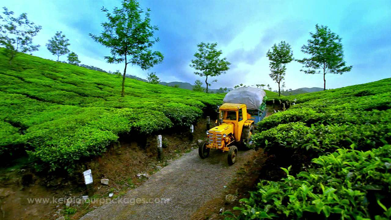 Beautiful landscapes kerala tour packages by travel for Travel planners kerala reviews