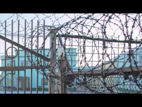Blatnoy Udar Official✵ Dolya Vorovskaya ✵ Remix  Live