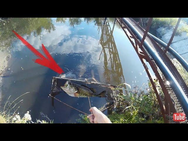 Волокуша для ловли рыб