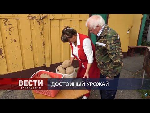 Вести Барановичи 16 сентября 2019.