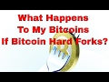 Bitcoin Hard Fork Explained | What is a Fork? What Happens to My Coins?