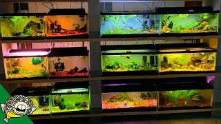 check-out-the-lighting-in-this-fish-room
