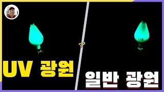 쭈꾸미 갑오징어낚시 UV축광 캡라이트 조과 UP[밀루유…