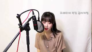 아이유(IU) - 밤편지(Through the Night) COVER by 보람