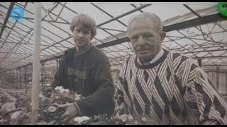 Zwerven door de regio - Eric Sleutjes Den Dungen