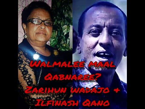 Zarihun Wadajo & Ilfinash Qano