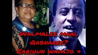 """Zarihun Wadajo & Ilfinash Qano """"Walmalee Maal Qabnaree? /Oromo Old Music/"""""""