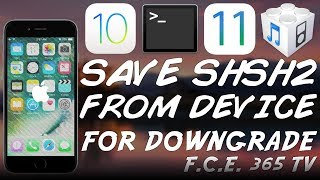 How To Save Shsh Blobs  Apticket  From Device For Future Downgrade  No Jailbreak