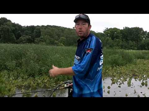 BASS FISHING  TIPS FOR THE POTOMAC RIVER