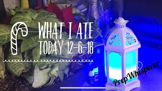 What I ate today & my new Young Living Diffuser !! Dec. 6th