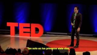 Kevin Allocca ¿Porque un video se vuelve viral? TED Talks subtitulado