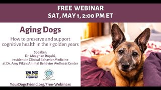 Aging Dogs – How to Preserve and Support Cognitive Health in their Golden Years  5/1/21
