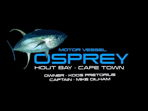 Giant Yellowfin Tuna Fishing, Hout Bay, Cape Town 2017