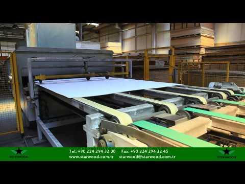 Starwood Orman Ürünleri A.Ş. Tanıtım Videosu 2011