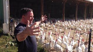 Executive Ulman Participates in Annual Farm-City Job Exchange