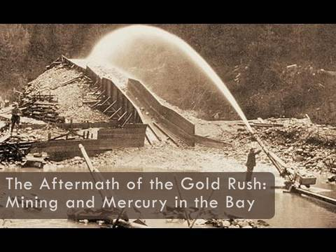 Saving The Bay - The Aftermath Of The Gold Rush: Mining And Mercury In San Francisco Bay