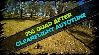 250 quadcopter after cleanflight autotune