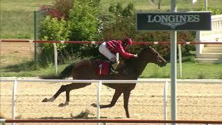 Vidéo de la course PMU PREMIO HOGUERA