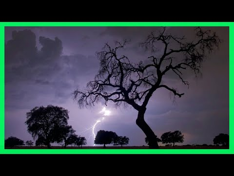 ⚡ Sonido Lluvia y Truenos ⚡ 4 Horas - Tormenta Fuerte -  Relax Lluvia y Truenos
