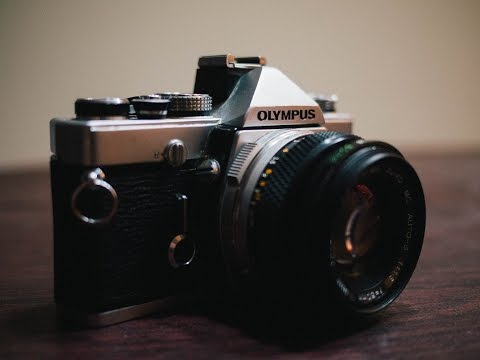Full Frame for the People: Olympus OM-1 camera review